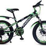 Las Mejores Bicicletas plegables NS Bikes