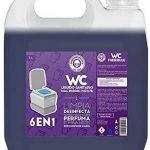 Mejores Liquido wc quimico