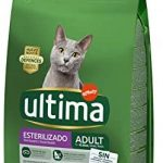 Mejores Pienso gatos esterilizados