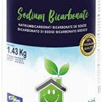 Mejores Bicarbonato de
