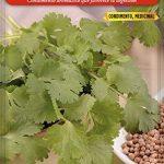 Mejores Semillas de cilantro