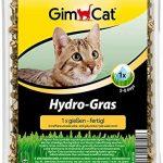 Mejores Hierba para gatos