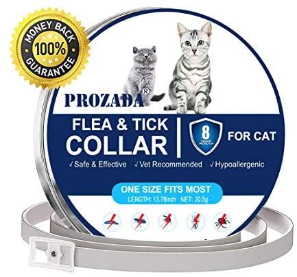 Mejores Collar antiparasitario gatos